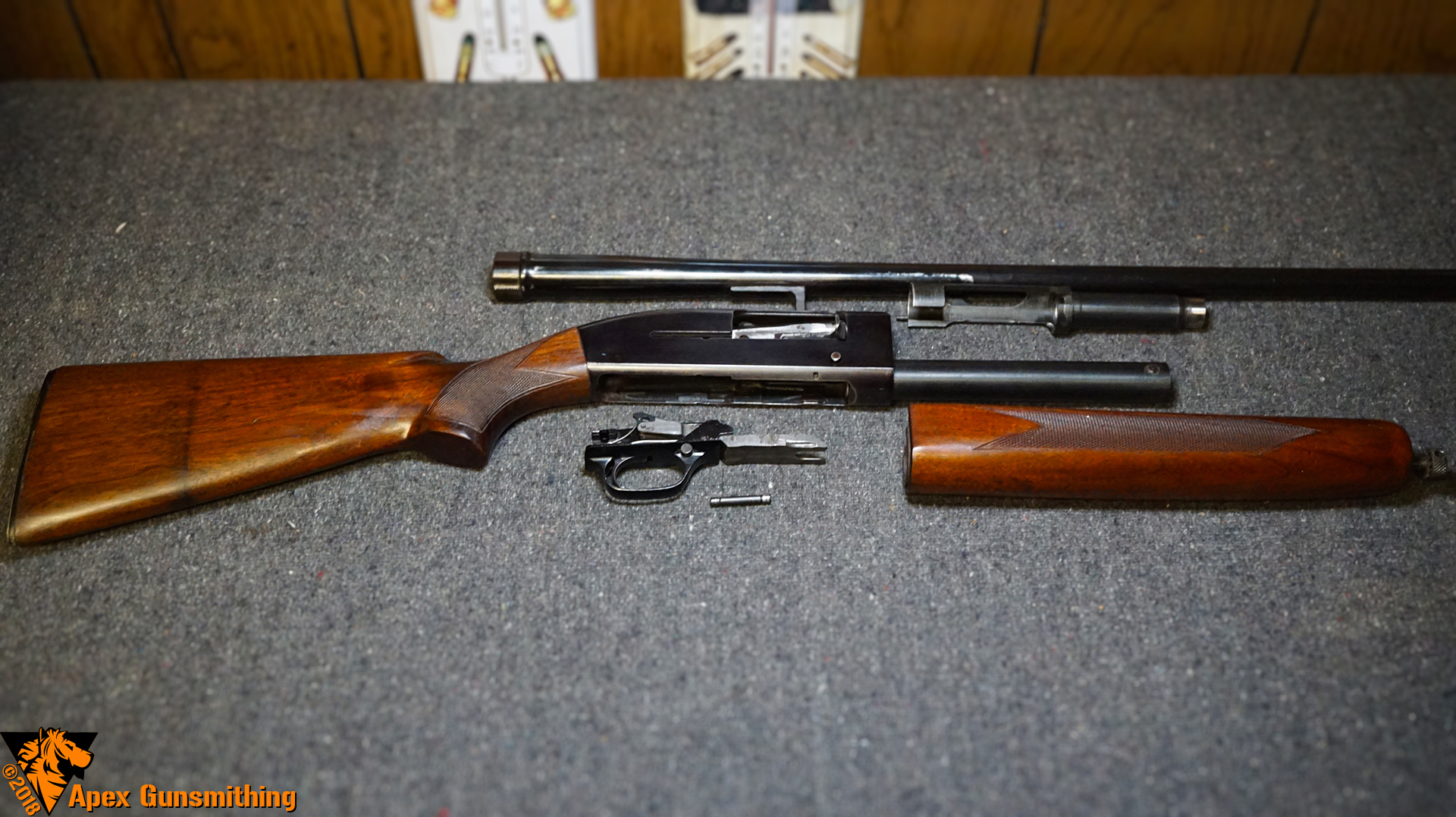 Disassembly Guide: Winchester Model 50 12 Gauge « Apex